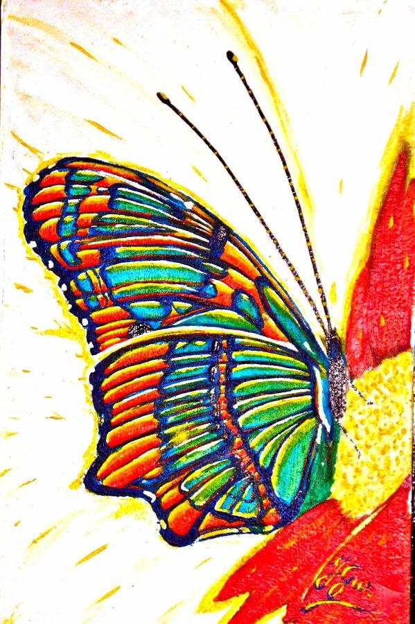 Papillonmulticolore Tableaux Peinture Acrylique Toiles Animaux